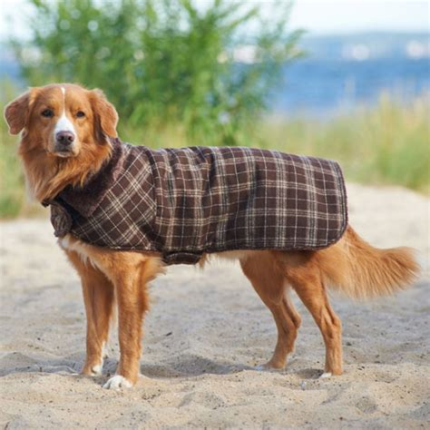 outside dogs fashion pet outdoor country plaid coat coats
