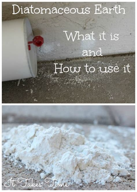 Backyard Chickens Diatomaceous Earth Diatomaceous Earth What It Is And How To Use It Earth