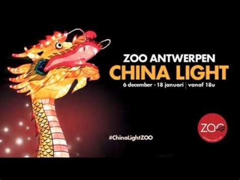 china light zoo 2014