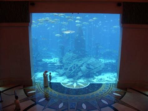 Aquarium Floor by Free Sammy Picture Of Atlantis The Palm Dubai