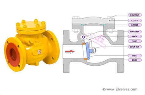 what is swing check valve ipurchased