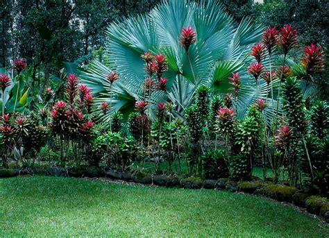 20 gardens tropical plants design ideas furniture