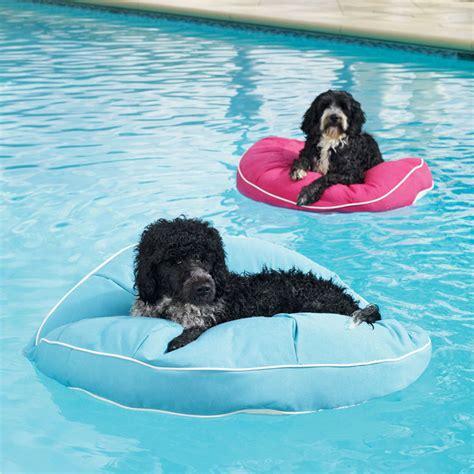 Garage Design Software kai pet pool floats the green head