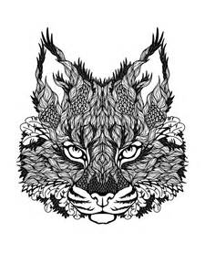 cat coloring pages for adults cat coloring pages for adults bestofcoloring