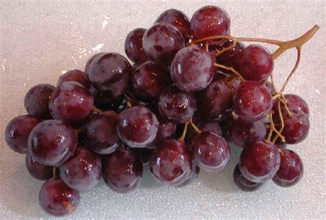 my ate 3 grapes grape