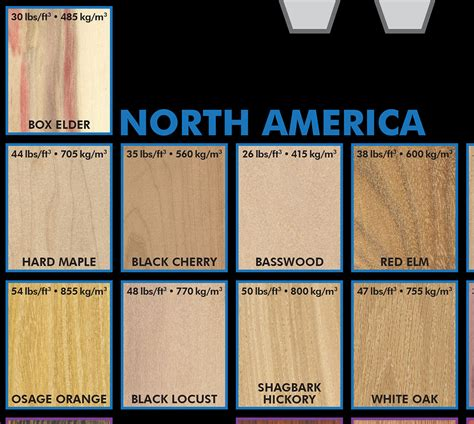 Periodic Table Of Wood by The Periodic Table Of Wood Poster The Wood Database