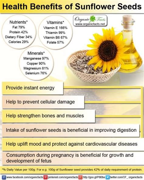 benefits of black sunflower seeds for horses health benefits of sunflower can be gained in two forms