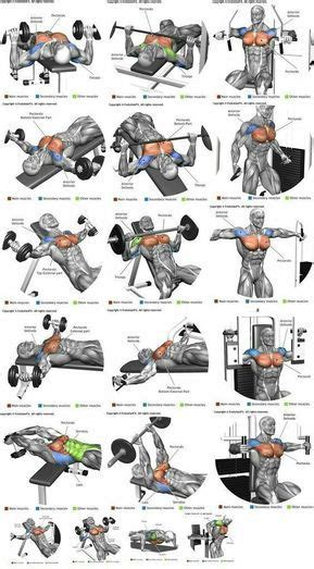 chest workout at home for strength and mass chest exercises for and fitness