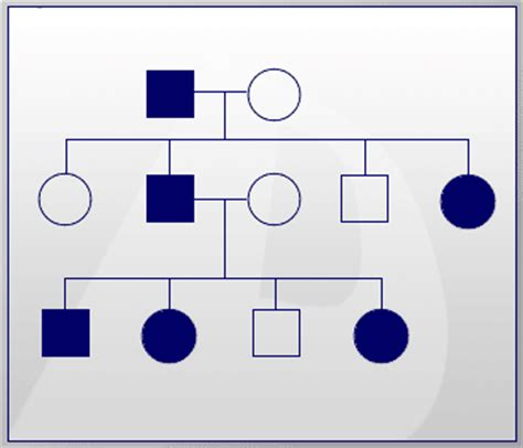definition pattern of inheritance genetics physician assistant studies 000 with feldman at