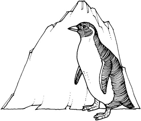 magellanic penguin coloring page penguin 2 coloring page free printable coloring pages
