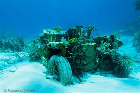 jeep snorkel underwater jeep reef by susanna girolamo via flickr above below