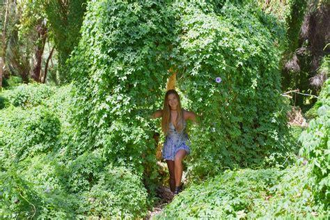 secret garden  perth visitors guide
