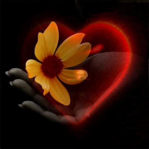 imagenes de amor ilusion amor e ilusi 243 n reflexiones de amor te amo web
