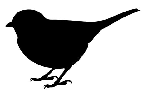 Flying Blackbird Outline by Printable Bird Silhouettes Clipart Best