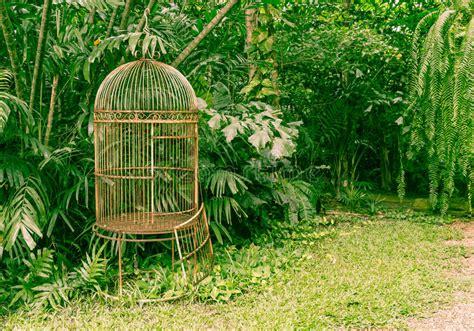 L Use Im Garten 3980 by Leerer Alter Vogelk 228 Fig Im Garten Stockbild Bild