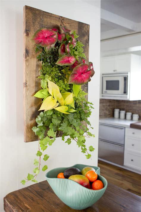 Grovert Living Wall Planter by Walnut Framed Grovert Living Wall Kit Edible Walls