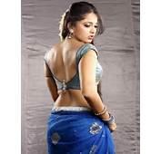 Net Sarees 2013  Hot Pakistani &amp India Blouse Designs For