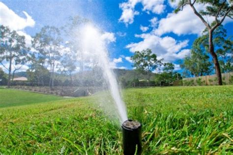 irrigation services a greener tomorrow inc landscaping