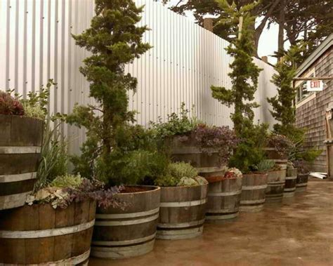 Barrel Planters Cheap by The 25 Best Ideas About Wine Barrel Planter On