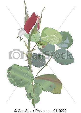 Rosebud 2cm clip of rosebud and leaves ready to bloom ideal for