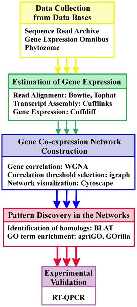 workflow synonym workflow synonym 28 images workflow diagram synonym