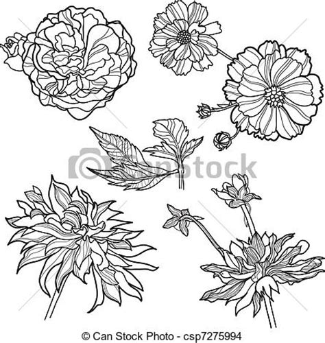 eps vector of set of floral design elements from my big