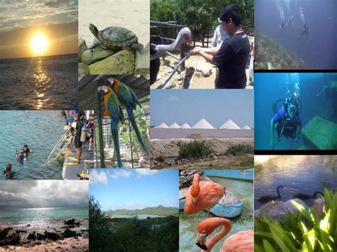 imagenes monumentos naturales de venezuela problemas ambientales en venezuela sus causas nuestra