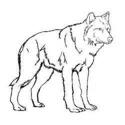 kidscolouringpages orgprint amp download realistic wolf coloring pages hard kidscolouringpages org