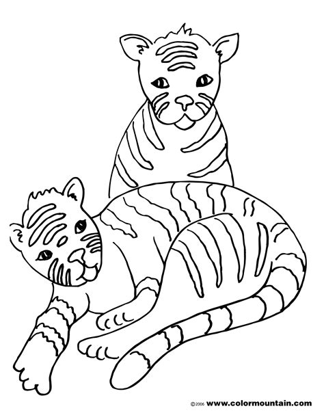 Baby Tiger Outline by Free Coloring Pages Of Babay Easy Tiger