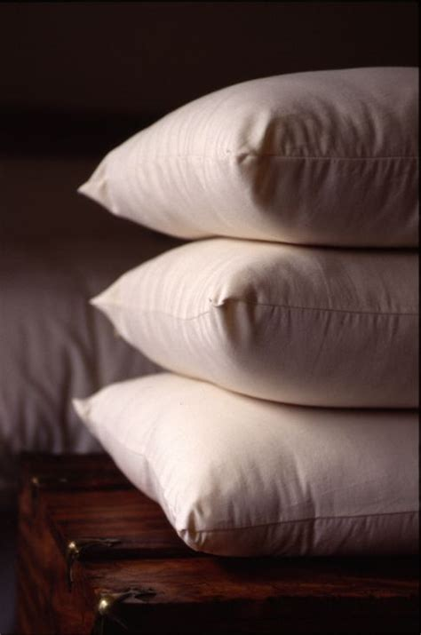 organic bed pillows organic bed pillows holy lamb organics pillows
