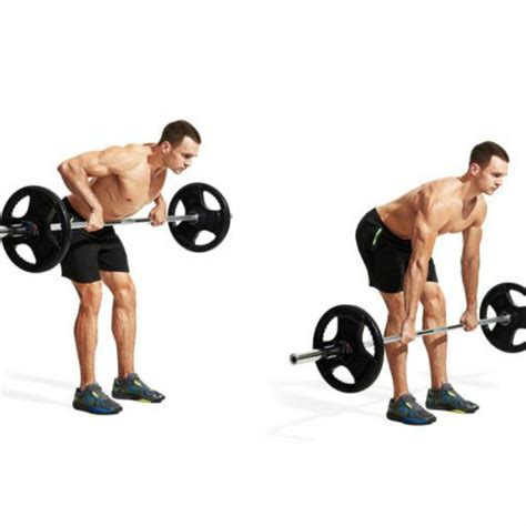 bench over row barbell bent over row video watch proper form get tips
