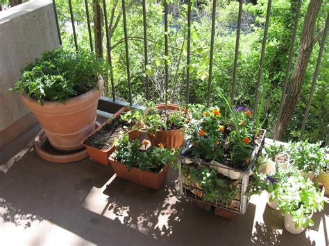 build balcony vegetable garden ideas