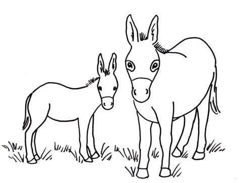 donkey pinata coloring page mexican donkey pinata coloring pages printable animal