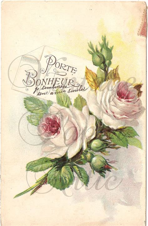 cuadro tris rose shabby shabby pink roses postcard antique chromolithograph from vintage paper attic cuadros y