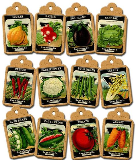 Vegetable Seed Packets Vintage Art Hang Gift Tags Labels Free Vegetable Garden Seeds