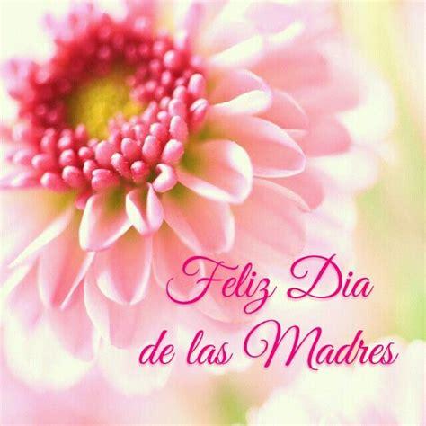 imagenes de rosas feliz dia delas madres 17 mejores im 225 genes sobre feliz d 237 a de las madres en