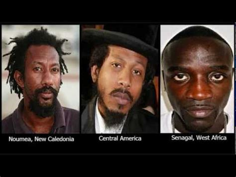 types of black people supposedly african americans don t come from africa page