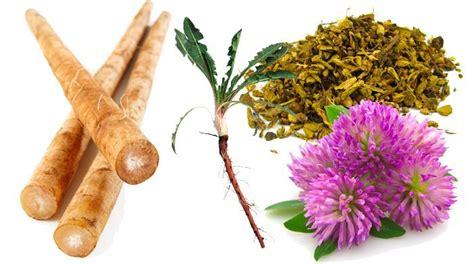Top Detox Herbs by How To Gallbladder Disease Naturally Detox Foods
