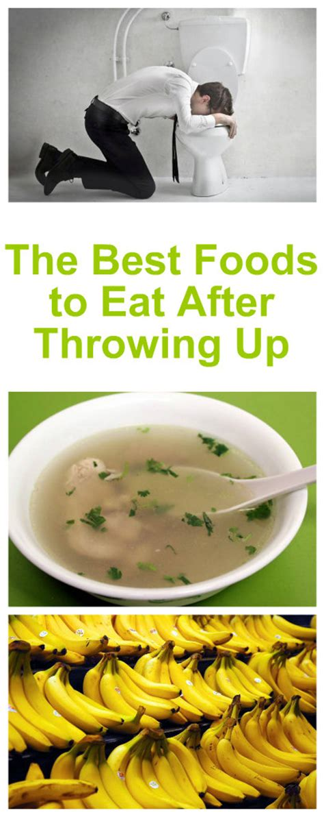 what can i give my for vomiting the best foods to eat after throwing up