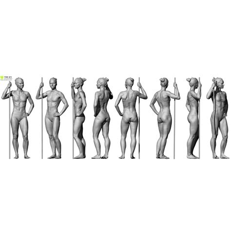 full female anatomy shaded female 04 pose 6