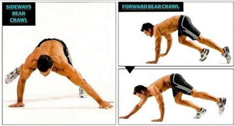 upper body circuit bear crawl for bigger arm and shoulder strength and muscle gains muscle