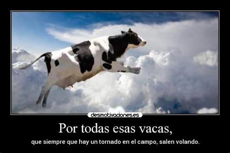 imagenes vacas locas una ni 241 a sale volando por los aires learn to say