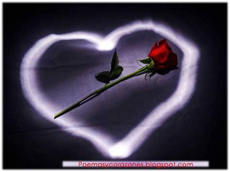 imágenes románticas sin frases frases de reflexi 243 n de amor para mi amor felicitaciones