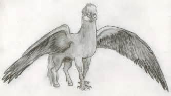 hippogriff harry potter drawing xxsoulsurvivorxx 169 2017 21 2012