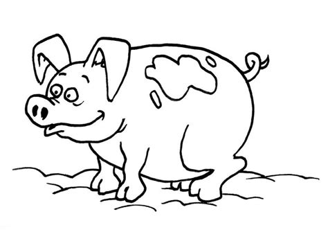 funny creature 26 pig coloring pages for kids print girls coloring pages print color craft part 11