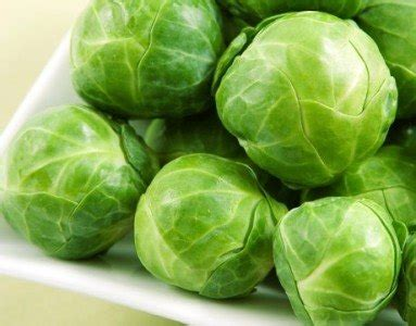 dogs brussel sprouts 28 healthy foods for dogs to eat at home change your pet s diet now
