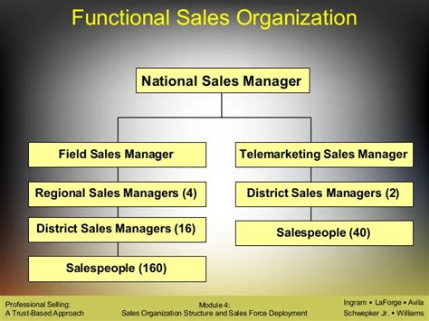 sle of organizational structure types of sales organisation structure