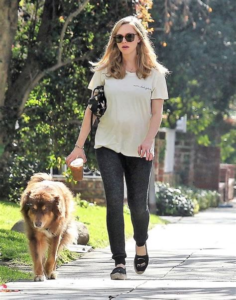 amanda seyfried baby picture pregnant amanda seyfried spends the day with her dog