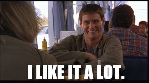 I Like It Meme - dump a day 22 dumb and dumber quotes you should still be