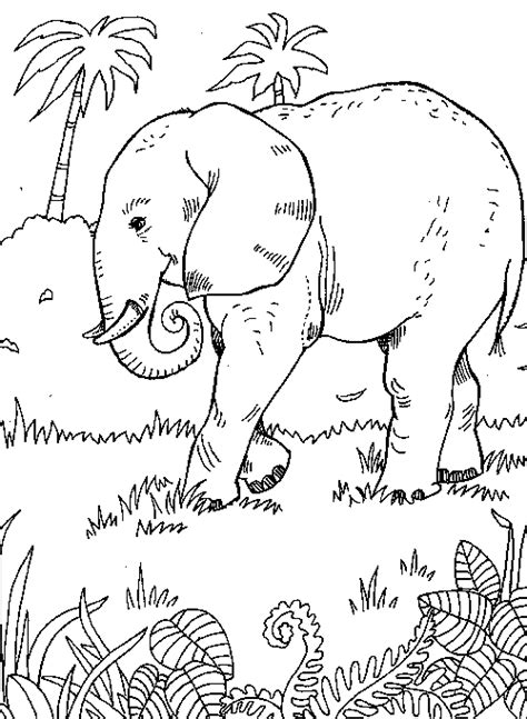 elephant jungle scene from quot 999 coloring pages quot flat